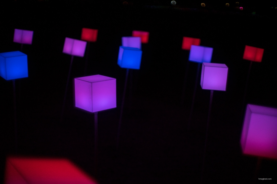 DSC03670 Cubes